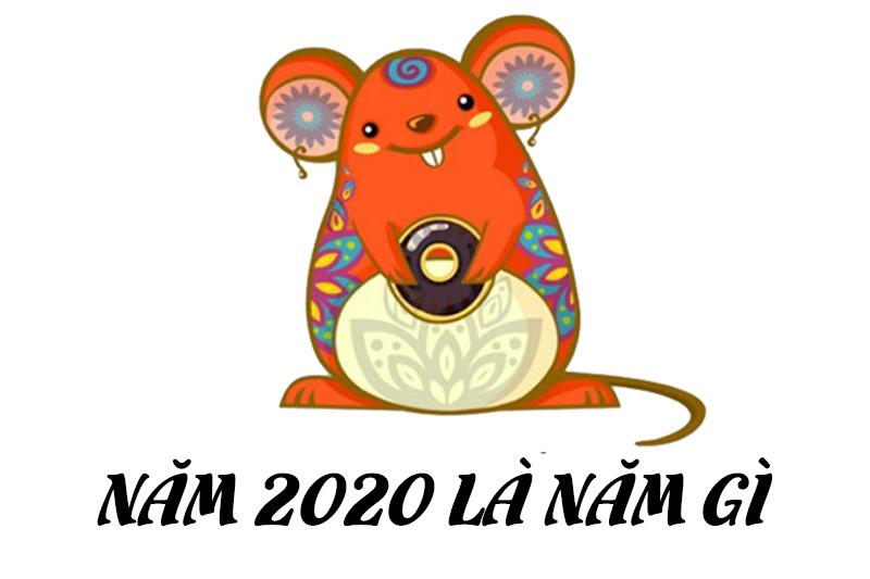 Năm 2020 là năm gì và các ý nghĩa liên quan 1
