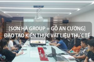 [Sơn Hà Group + Gỗ An Cường] Đào tạo kiến thức vật liệu thực tế tháng 6/2020 8